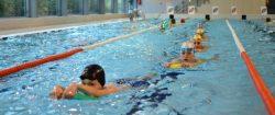 Plavecké kurzy Brno Krokodýl